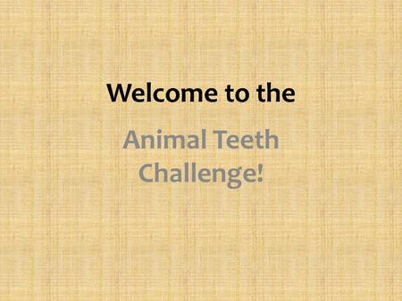 Welcome to the Animal Teeth Challenge!. Draw this table in your IC Notebook: