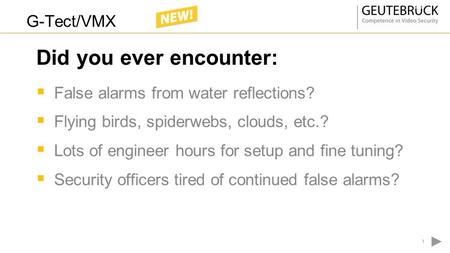  False alarms from water reflections?  Flying birds, spiderwebs, clouds, etc.?  Lots of engineer hours for setup and fine tuning?  Security officers.