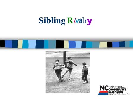 Sibling R i v a l r y. Program Objectives n Parents will understand reasons for sibling rivalry n Parents will learn about ways to reduce fighting among.