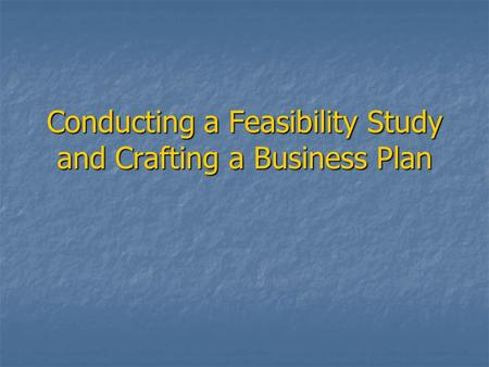 Conducting a Feasibility Study and Crafting a Business Plan
