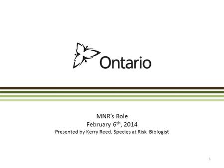 MNR's Role February 6 th, 2014 Presented by Kerry Reed, Species at Risk Biologist 1.
