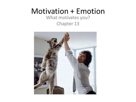 Motivation + Emotion What motivates you? Chapter 13.
