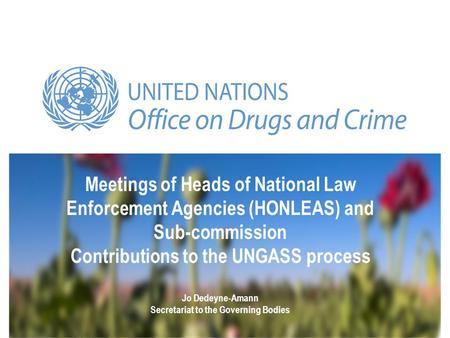 Meetings of Heads of National Law Enforcement Agencies (HONLEAS) and Sub-commission Contributions to the UNGASS process Jo Dedeyne-Amann Secretariat to.