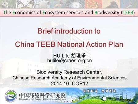 Brief introduction to China TEEB National Action Plan HU Lile 胡理乐 Biodiversity Research Center, Chinese Research Academy of Environmental.