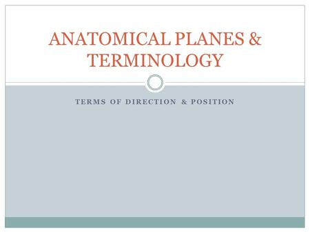 ANATOMICAL PLANES & TERMINOLOGY