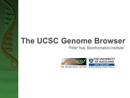 Peter Tsai, Bioinformatics Institute.  University of California, Santa Cruz (UCSC)  A rapid and reliable display of any requested portion of genomes.