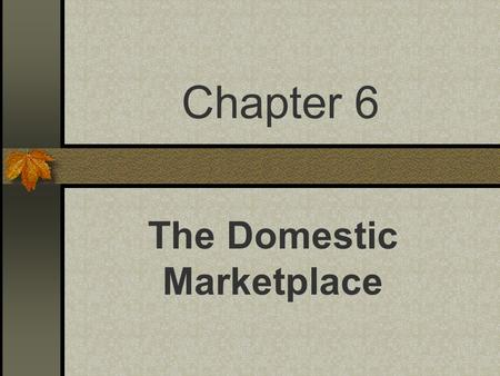Chapter 6 The Domestic Marketplace. Activity #1 In table groups…List all of the members of your immediate family. Next, decide which MARKET these people.