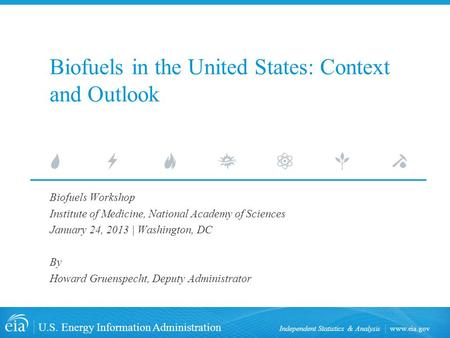 Biofuels in the United States: Context and Outlook
