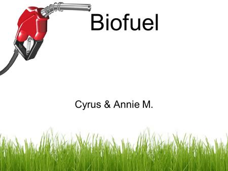 Biofuel Cyrus & Annie M.. Manure Animal waste can be converted into energy through the process of anaerobic digestion (AD). AD converts organic matter.