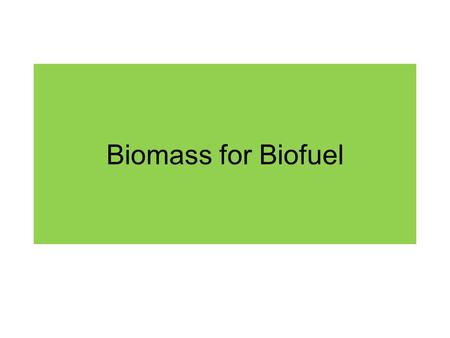 Biomass for Biofuel.