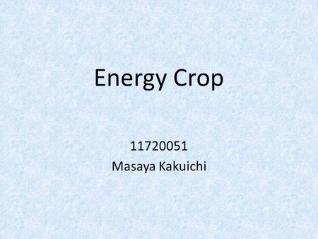 Energy Crop 11720051 Masaya Kakuichi. What is energy crop? An energy crop is a plant grown as a low cost and low maintenance harvest used to make biofuels,