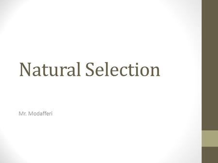 How Does Genetic Variation Within A Species Influence Natural Selection