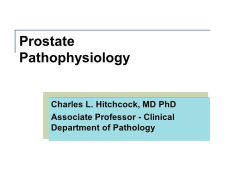 Prostate Pathophysiology Charles L. Hitchcock, MD PhD Associate Professor - Clinical Department of Pathology.