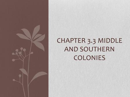 CHAPTER 3.3 MIDDLE AND SOUTHERN COLONIES. The Middle Colonies New York, New Jersey, Pennsylvania, and Delaware Swedes, Dutch, English, Germans and Africans.