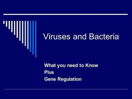 What you need to Know Plus Gene Regulation