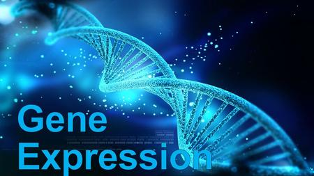 Why Regulate Gene Expression? Response to changing developmental or environmental conditions Save… time time energy energy raw materials raw materials.