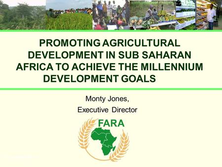 PROMOTING AGRICULTURAL DEVELOPMENT IN SUB SAHARAN AFRICA TO ACHIEVE THE MILLENNIUM DEVELOPMENT GOALS Monty Jones, Executive Director UN presentation.