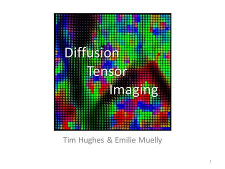 Diffusion Tensor Imaging Tim Hughes & Emilie Muelly 1.
