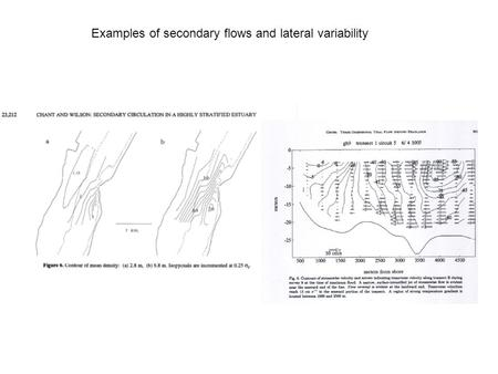 Examples of secondary flows and lateral variability.