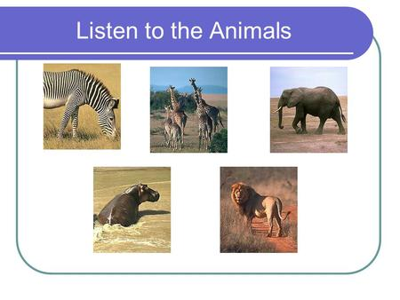 Listen to the Animals.