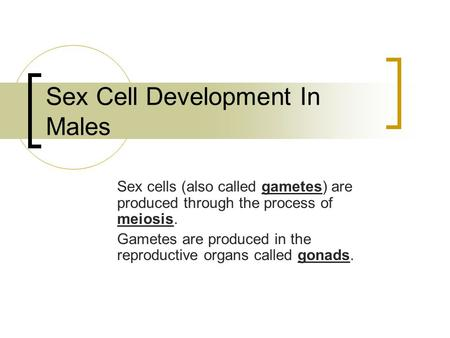 an analysis of the process of meiosis or production of sex cells Meiosis is a process which produces sex cells that eventually fuse to create a zygote a zygote is the precursor to an embryo, or the first stage in organism development a zygote is the precursor to an embryo, or the first stage in organism development.
