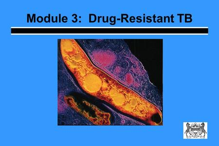 Module 3: Drug-Resistant TB. Learning Objectives Describe how drug resistance emerges Explain the difference between primary and secondary resistance.