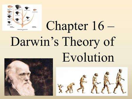 Chapter 16 – Darwin's Theory of Evolution