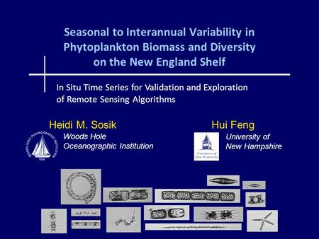 Seasonal to Interannual Variability in Phytoplankton Biomass and Diversity on the New England Shelf Heidi M. Sosik Hui Feng In Situ Time Series for Validation.