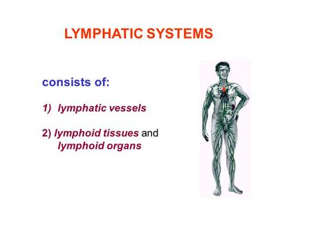 LYMPHATIC SYSTEMS consists of: lymphatic vessels