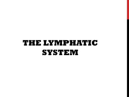THE LYMPHATIC SYSTEM. WHAT EXACTLY IS THE LYMPHATIC SYSTEM? What is the function of the Lymphatic System? Which organs are involved? How does it work?