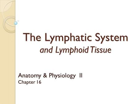 The Lymphatic System and Lymphoid Tissue