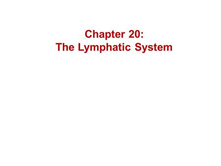 Chapter 20: The Lymphatic System. Florence Rena Saba – 1871-1953 - discovered important link between blood vessel and lymphatic vessel genesis.