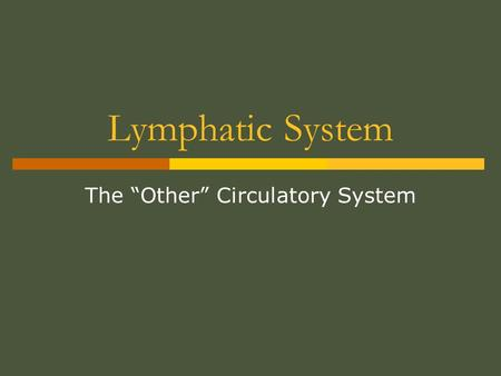 "The ""Other"" Circulatory System"