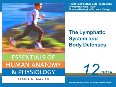 The Lymphatic System and Body Defenses