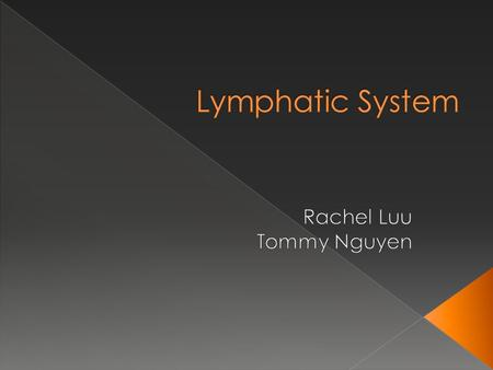 A. Lymphatic Vessels - Lymph : A clear to yellowish watery fluid that circulates through body tissues filtering out fats, bacteria, and other unwanted.