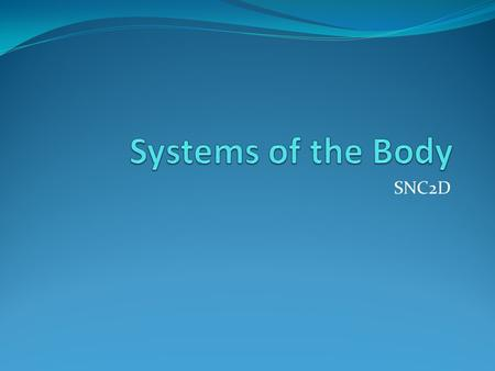 Systems of the Body SNC2D.