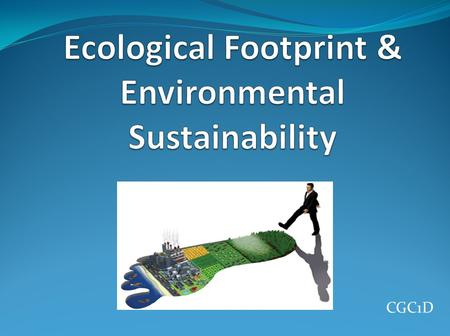 Ecological Footprint & Environmental Sustainability