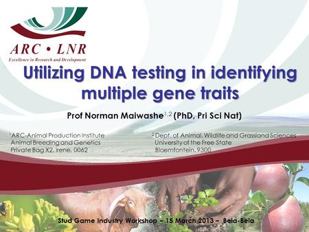 Utilizing DNA testing in identifying multiple gene traits Prof Norman Maiwashe 1,2 (PhD, Pri Sci Nat) 1 ARC-Animal Production Institute 2 Dept. of Animal,