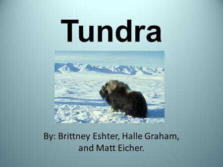 Tundra By: Brittney Eshter, Halle Graham, and Matt Eicher.