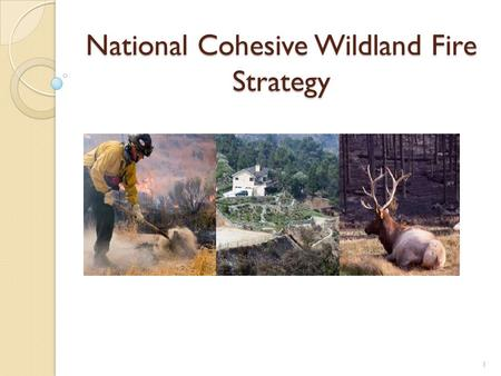 National Cohesive Wildland Fire Strategy 1. What is the Cohesive Strategy? A national, collaborative approach to addressing wildland fire across all lands.