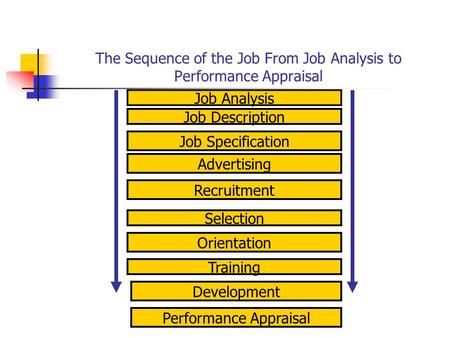 The Sequence of the Job From Job Analysis to Performance Appraisal Job Analysis Job Specification Job Description Development Performance Appraisal Training.