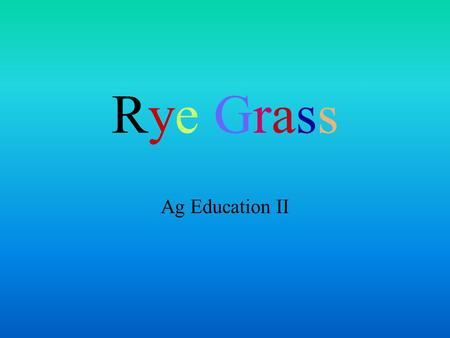 Rye Grass Ag Education II Rye Grass What do you know about rye grass? How many kinds of rye grass are there? Where is it grown? Why is rye grass important?