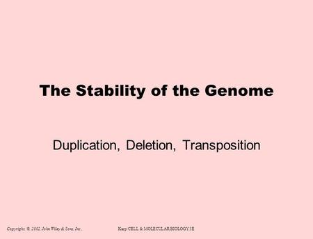 Copyright, ©, 2002, John Wiley & Sons, Inc.,Karp/CELL & MOLECULAR BIOLOGY 3E The Stability of the Genome Duplication, Deletion, Transposition.