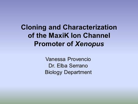 Cloning and Characterization of the MaxiK Ion Channel Promoter of Xenopus Vanessa Provencio Dr. Elba Serrano Biology Department.
