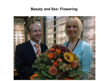 Beauty and Sex: Flowering. Flowers are derived from the process of transition from vegetative to generative meristems.
