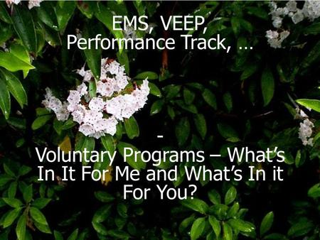 EMS, VEEP, Performance Track, … - Voluntary Programs – What's In It For Me and What's In it For You?