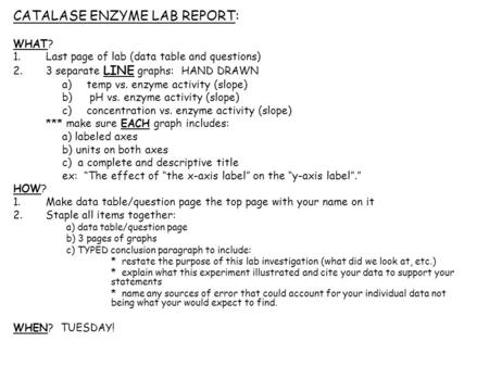 enzyme lab report