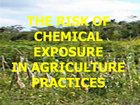 THE RISK OF CHEMICAL EXPOSURE IN AGRICULTURE PRACTICES.