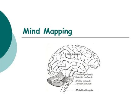 Mind Mapping.  Who?  Uses  Characteristics and how to…
