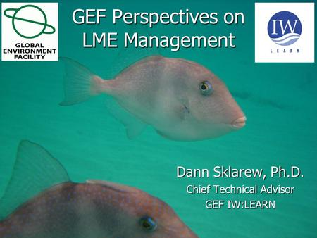 1 June 20151 June 20151 June 2015 GEF Perspectives on LME Management Dann Sklarew, Ph.D. Chief Technical Advisor GEF IW:LEARN.